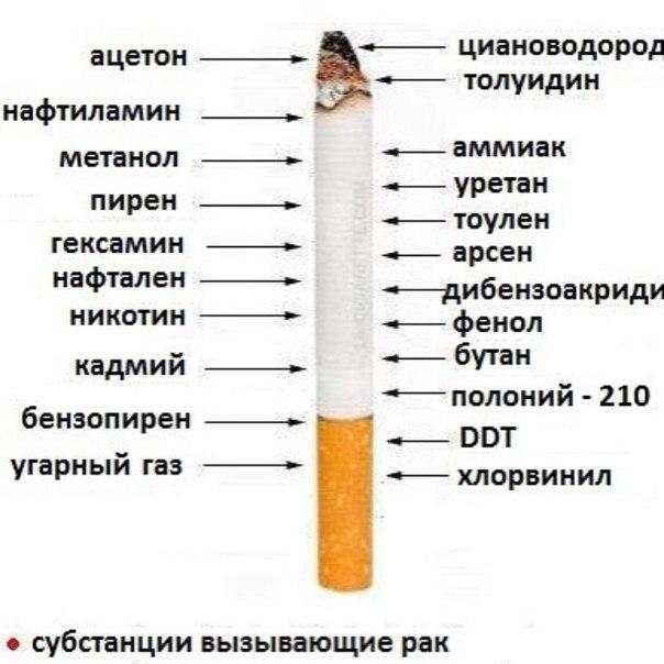 картинки что прячется в сигарете нам подарили поэтому