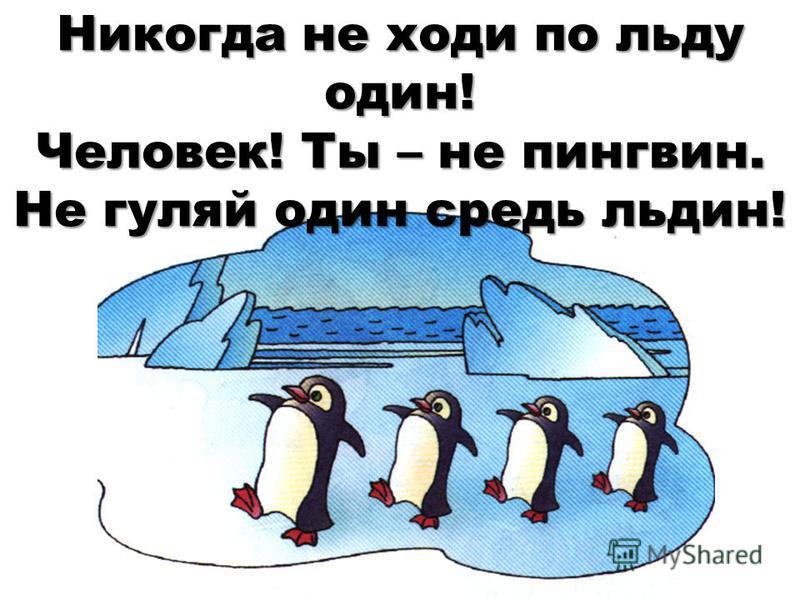 Картинки не ходи на тонкий лед